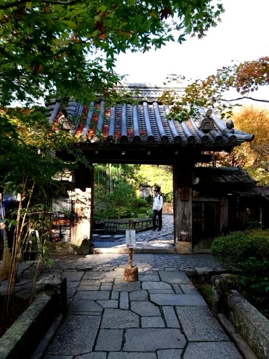 幸せ京都旅 「宝泉院」 大原の山里で心安らぐ美しき紅葉_c0362623_11094481.jpg