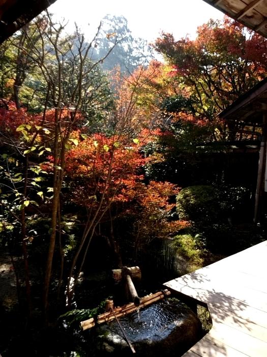 幸せ京都旅 「宝泉院」 大原の山里で心安らぐ美しき紅葉_c0362623_11094524.jpg