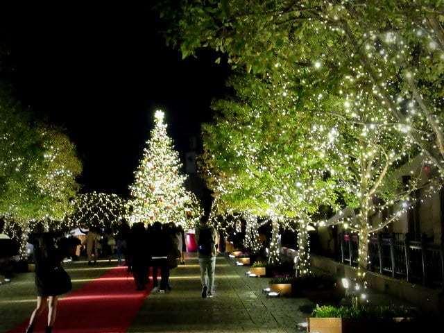 今年もバカラの「幸せを呼ぶルビークリスタル」 * 恵比寿ガーデンプレイス_f0236260_06265042.jpg