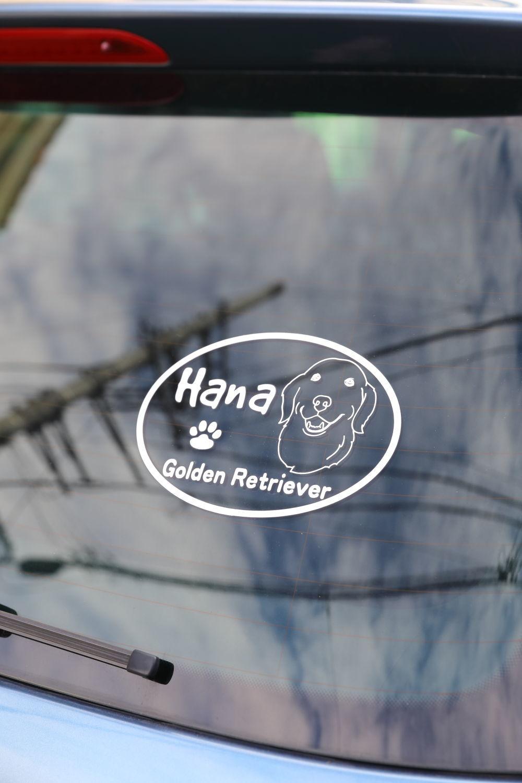 ハナ号_b0275998_12033356.jpg
