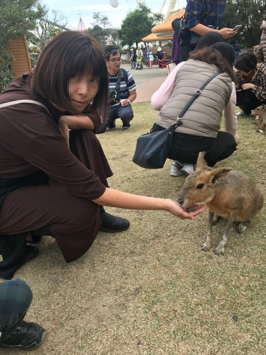 和歌山にいってきました_a0113003_11574829.jpg