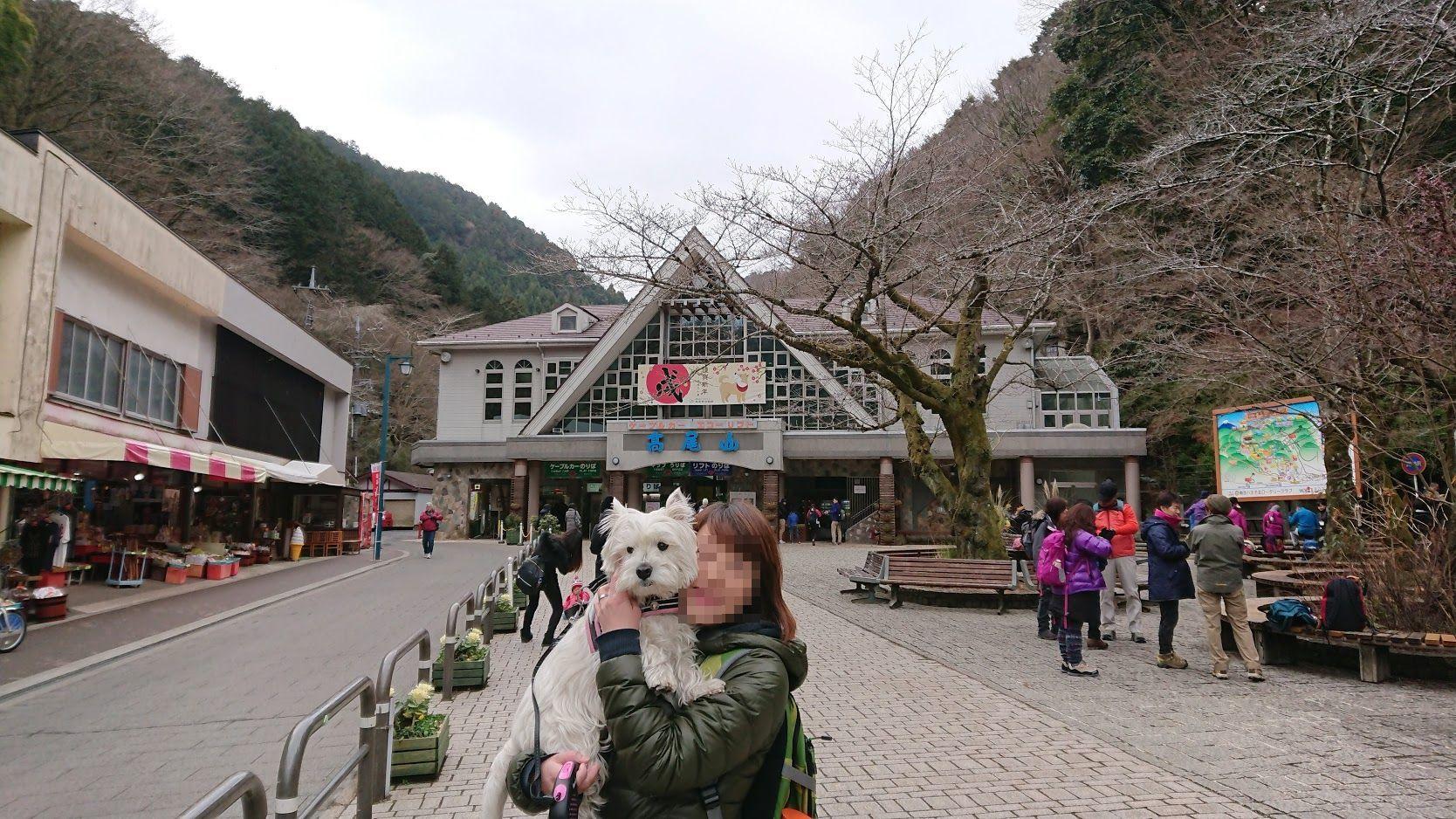 わかばと高尾山へ!_f0039907_14592577.jpg