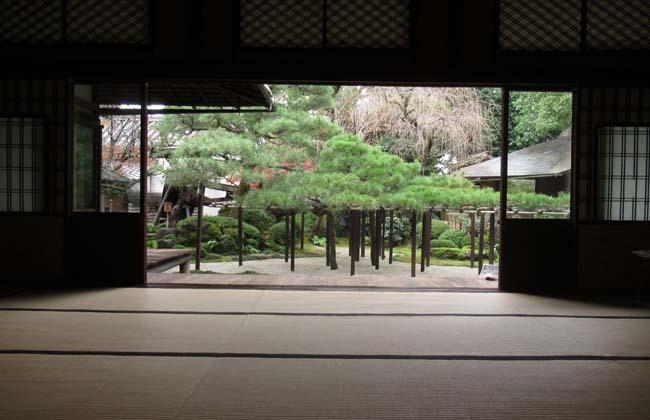 京都島原「角屋」_e0048413_17474885.jpg