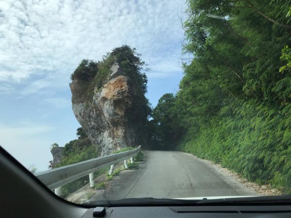 沖縄の旅。 その5 @大石林山_b0157216_22425782.jpg