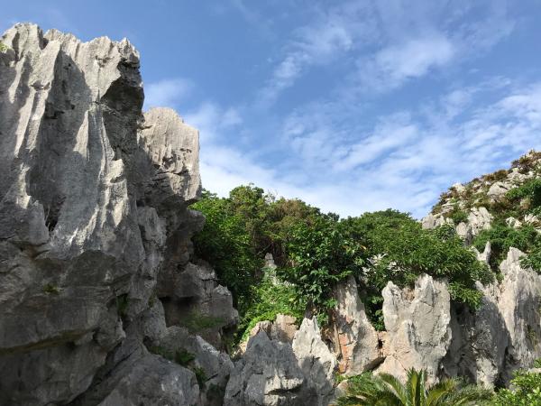 沖縄の旅。 その5 @大石林山_b0157216_23120129.jpg