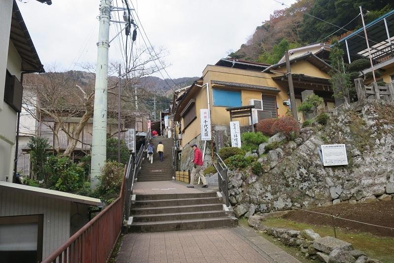 小机城から大山_f0202151_19591506.jpg