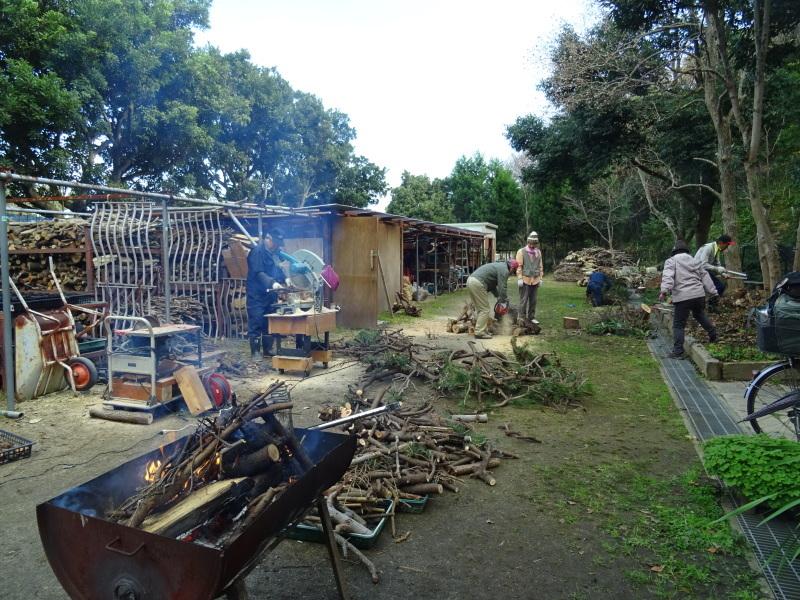 伐採木整理&薪割り・・・うみべの森_c0108460_17244306.jpg