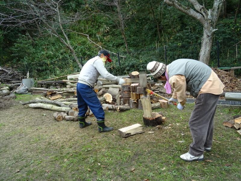 伐採木整理&薪割り・・・うみべの森_c0108460_17255388.jpg