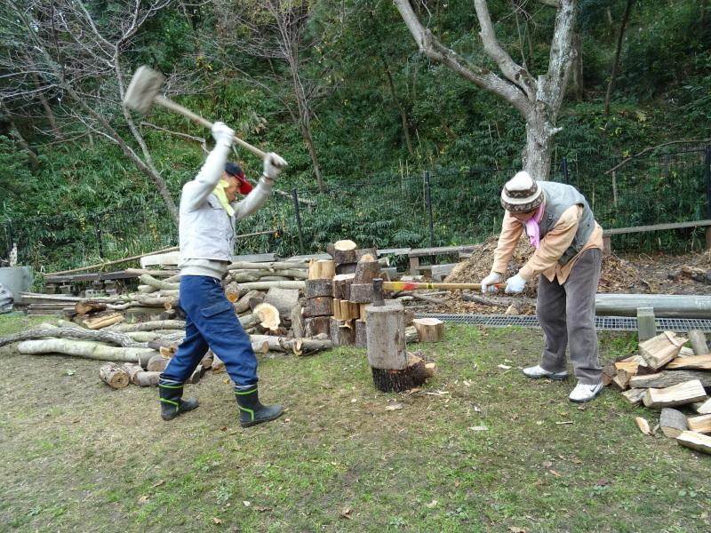伐採木整理&薪割り・・・うみべの森_c0108460_17255423.jpg