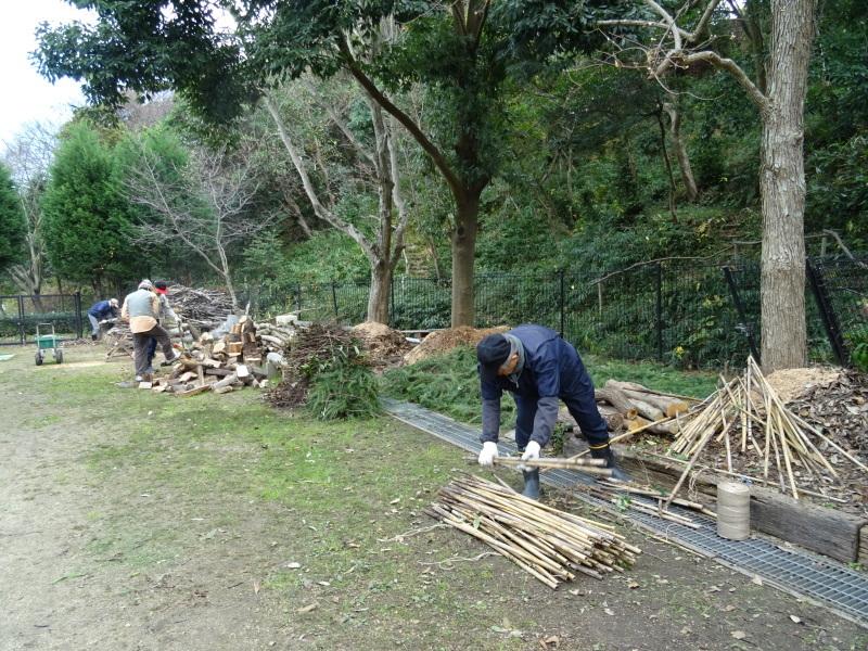 伐採木整理&薪割り・・・うみべの森_c0108460_17275298.jpg