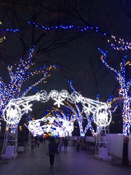 osaka光のルネサンス(中之島)_d0339676_23160553.jpg