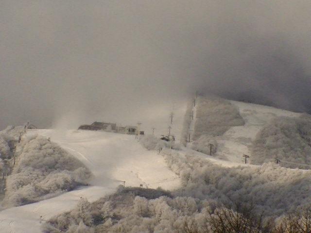 2018/12/13 来ました!降雪☆_a0140584_08073778.jpg