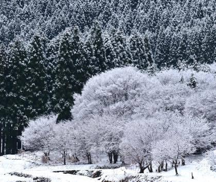 国道9号線から見える村岡の山々......スキー場の場所が....._b0194185_20564418.jpg