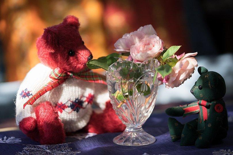12月の薔薇_d0353489_20003738.jpg