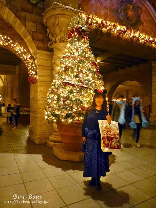 ディズニーシーのクリスマス その4 ラスト_d0128697_40338.jpg