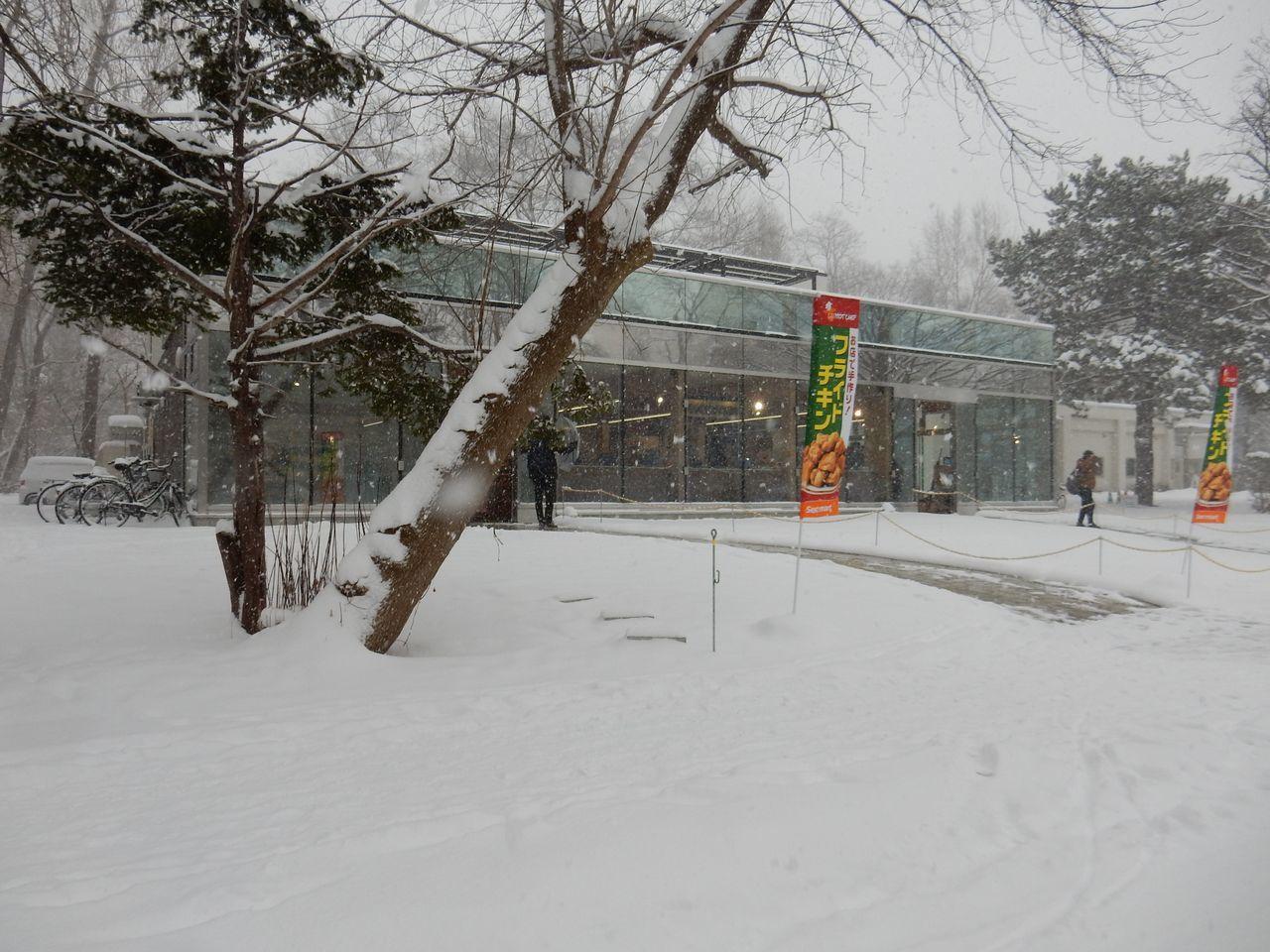 吹雪の北大へ_c0025115_21513196.jpg