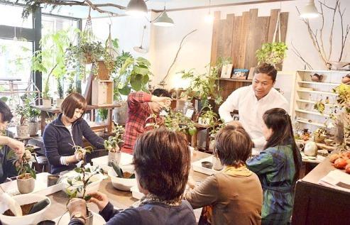1月の植物ワークショップのご案内_d0263815_17000690.jpg