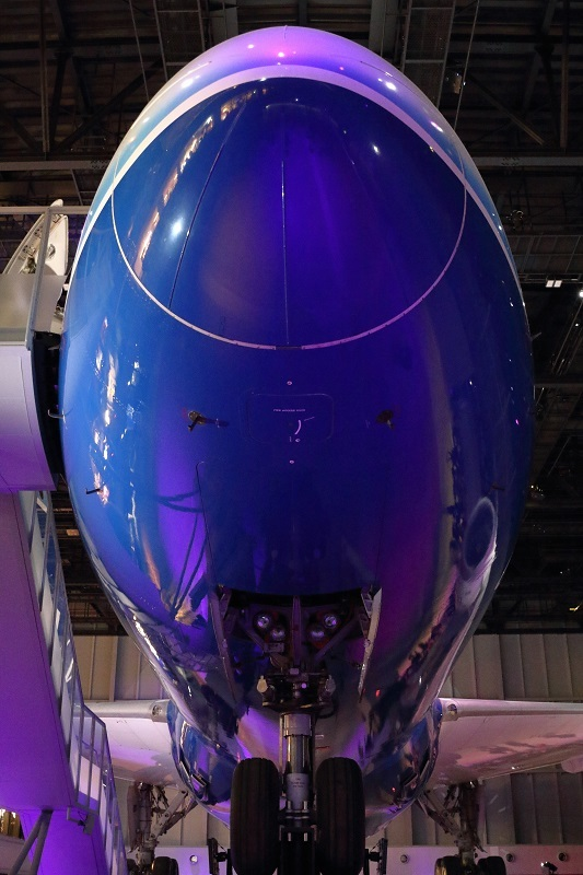 FLIGHT OF DREAMS_e0364223_20310001.jpg