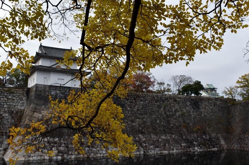 晩秋の大阪城 2_a0355356_22322519.jpg