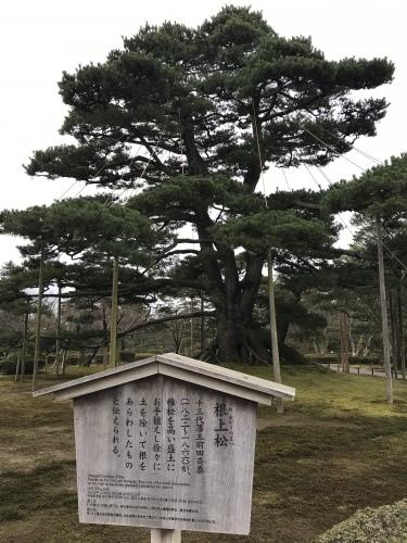 Kanazawa-2._c0153966_14535444.jpeg