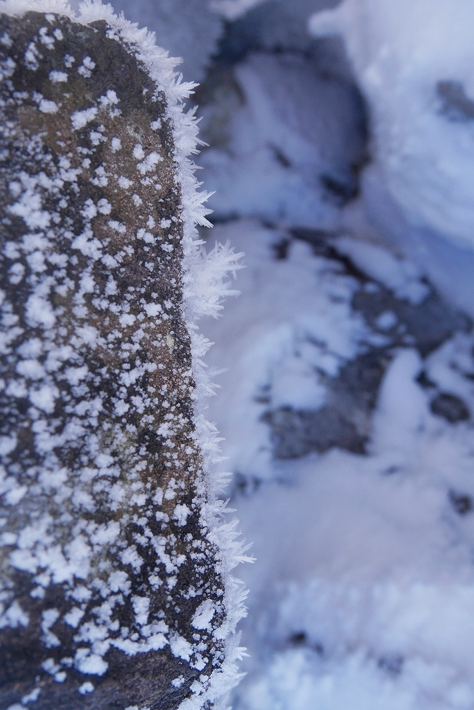 風不死岳北尾根、2018.12.13ーその1ー_f0138096_17295321.jpg