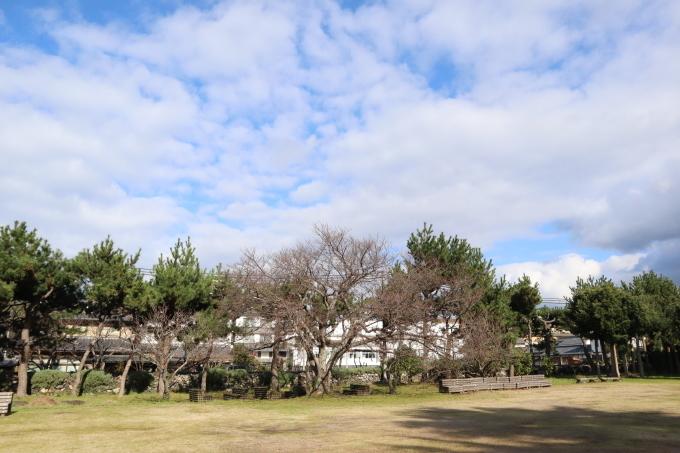 冬が来た!   春がかくれんぼ_b0239402_13421664.jpg