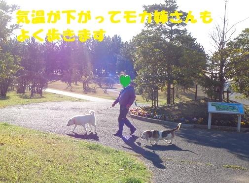 f0121712_22593261.jpg
