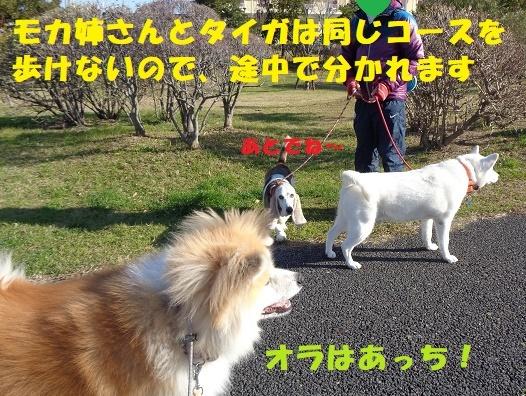 f0121712_23070398.jpg