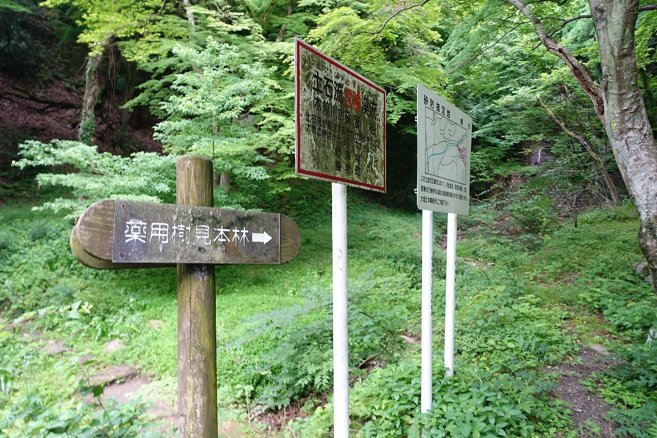 養老公園を下って帰路へ_c0112559_09010836.jpg