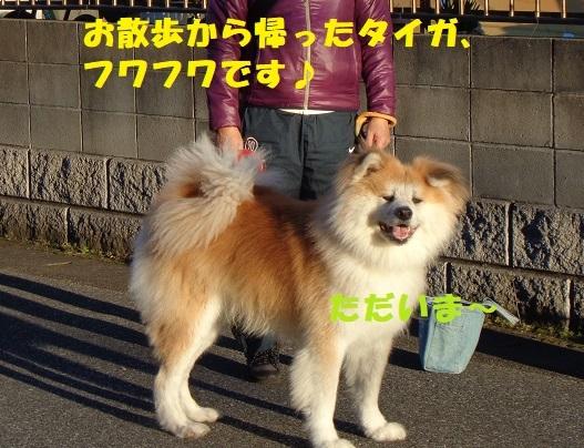 f0121712_00465440.jpg