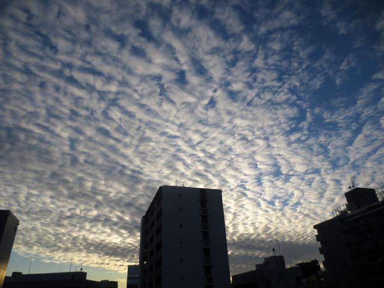 ■高野吾朗さんの詩・朗読の夕べ、週替わりの夕暮れ[12/10-14]_d0190217_21061912.jpg
