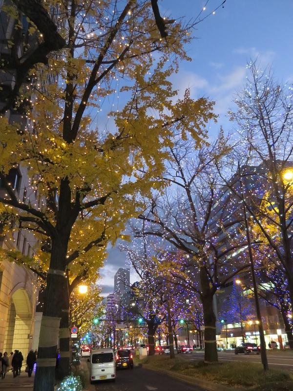 御堂筋イルミネーション2018・・・「光の饗宴」_d0352628_104647.jpg