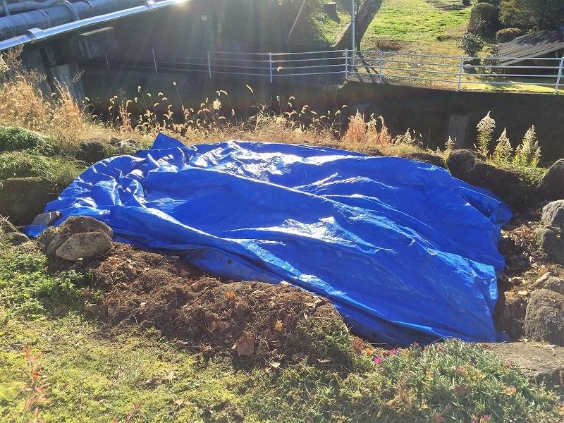 堆肥熟成とブルーベリーの越冬_f0076731_13424658.jpg
