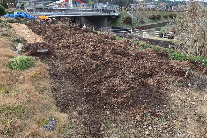 堆肥熟成とブルーベリーの越冬_f0076731_13510452.jpg