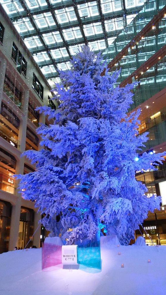 クリスマスツリー@KITTE_d0044239_20021904.jpg