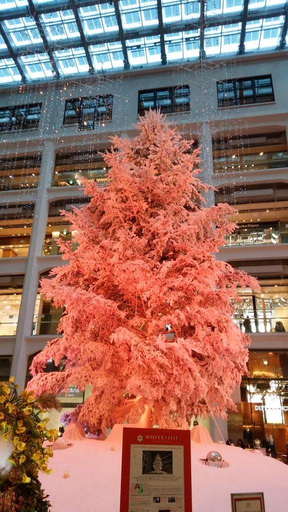 クリスマスツリー@KITTE_d0044239_20022314.jpg