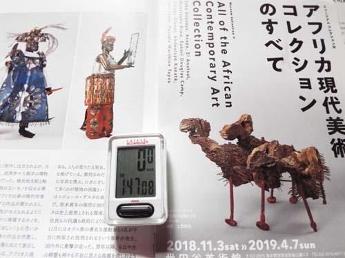 ぐるっとパスNo.15 世田谷美術館「アフリカ現代美術」展まで見たこと_f0211178_17263269.jpg