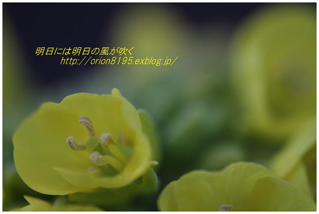 f0361079_17272083.jpg
