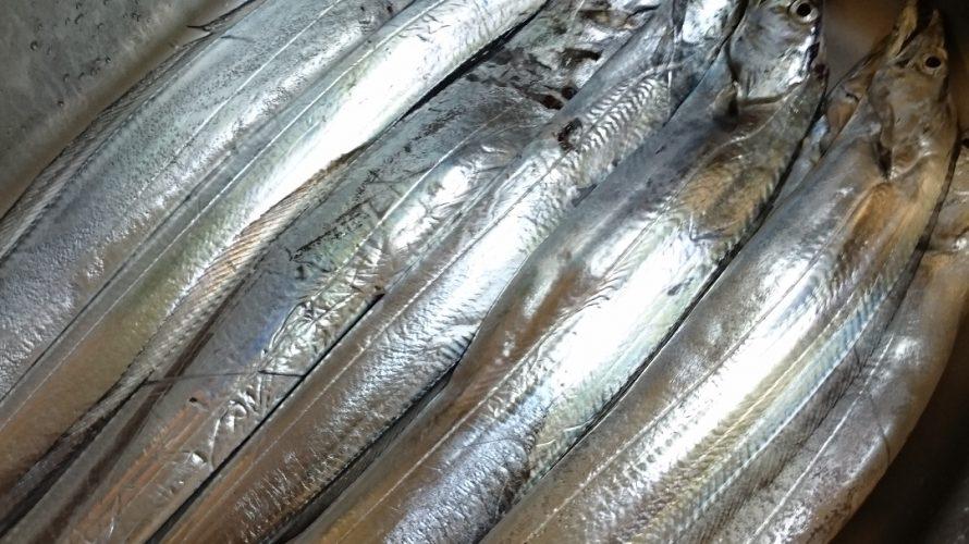 太刀魚_f0172281_7133396.jpg