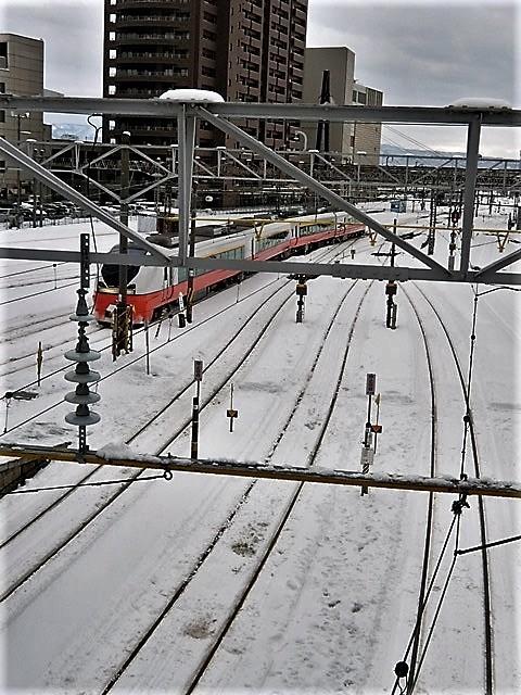 藤田八束の鉄道写真@北海道で出会った極寒の中の鹿たち、夕日に群れる鹿の群れ、北海道の列車達_d0181492_21101679.jpg