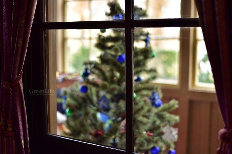 スペインのクリスマス_f0321522_20570134.jpg