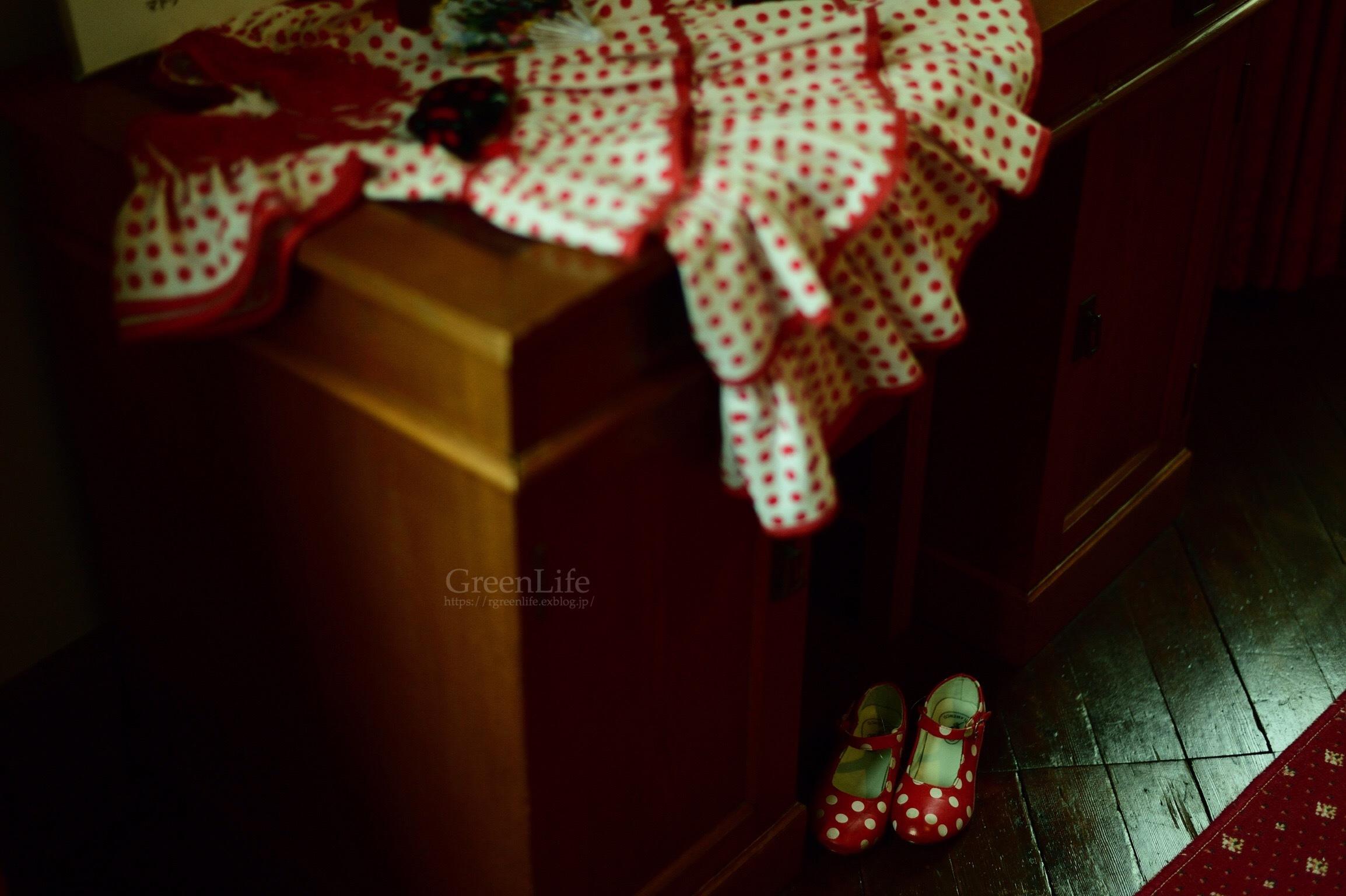 スペインのクリスマス_f0321522_20581360.jpg