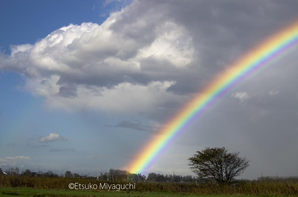 虹、鮮やかに_f0152939_20003212.jpg