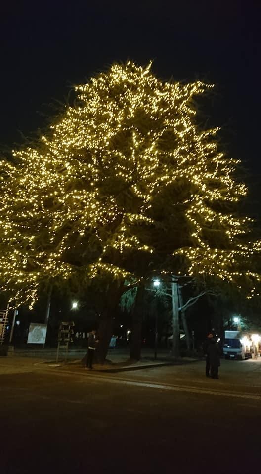 鶴舞公園スペシャルクリスマス2018_f0373339_15021969.jpg