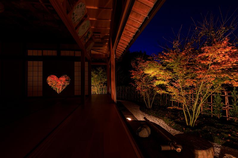 京の紅葉2018 正壽院ライトアップ_f0155048_014273.jpg