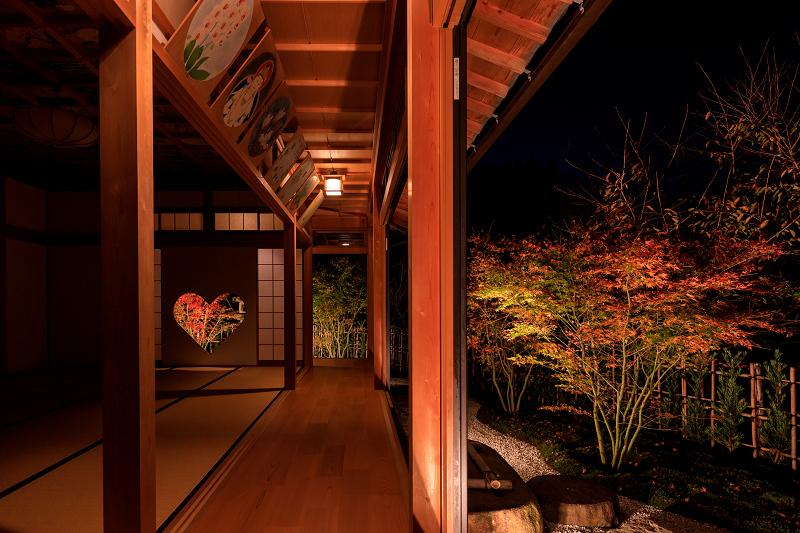 京の紅葉2018 正壽院ライトアップ_f0155048_0163776.jpg