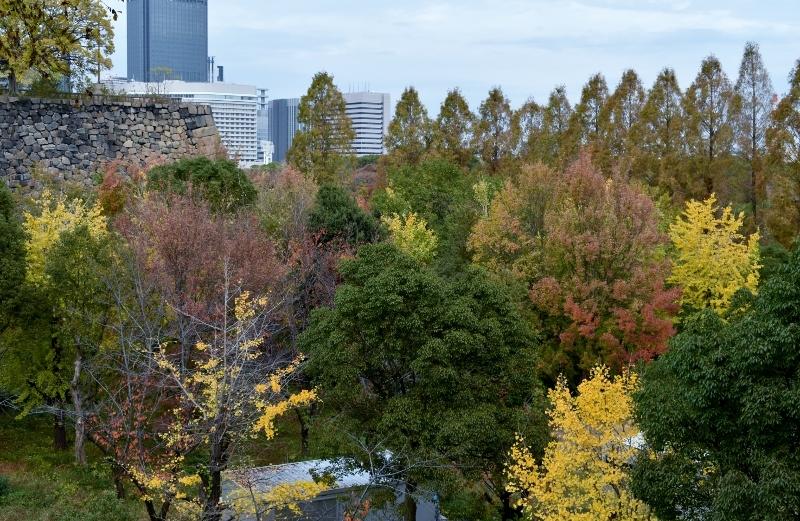 晩秋の大阪城 3_a0355356_13501833.jpg