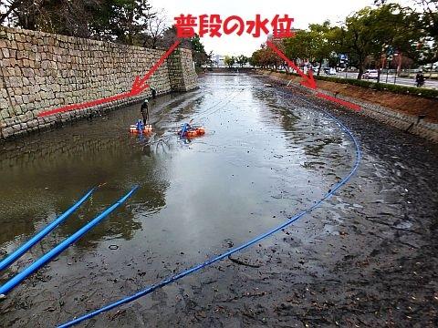 池の水をぜんぶ抜く大作戦??? at 丸亀城_e0146484_16043653.jpg