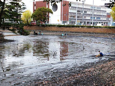 池の水をぜんぶ抜く大作戦??? at 丸亀城_e0146484_16044766.jpg