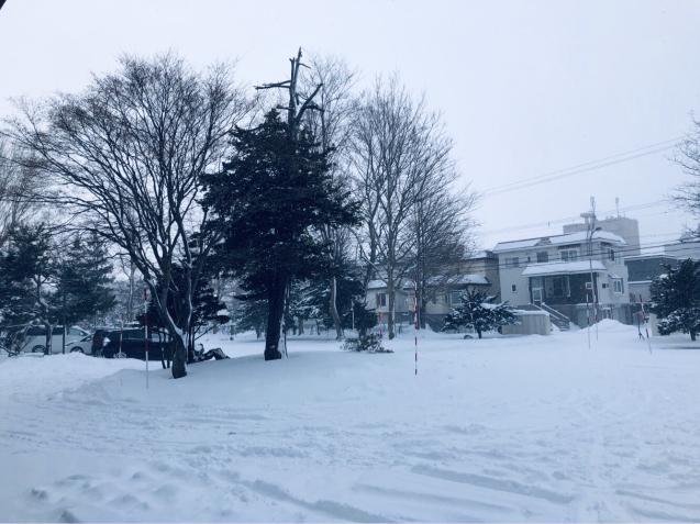 札幌出張(雪景色編)_e0061304_13253364.jpg
